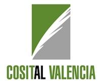 cosital val logo web